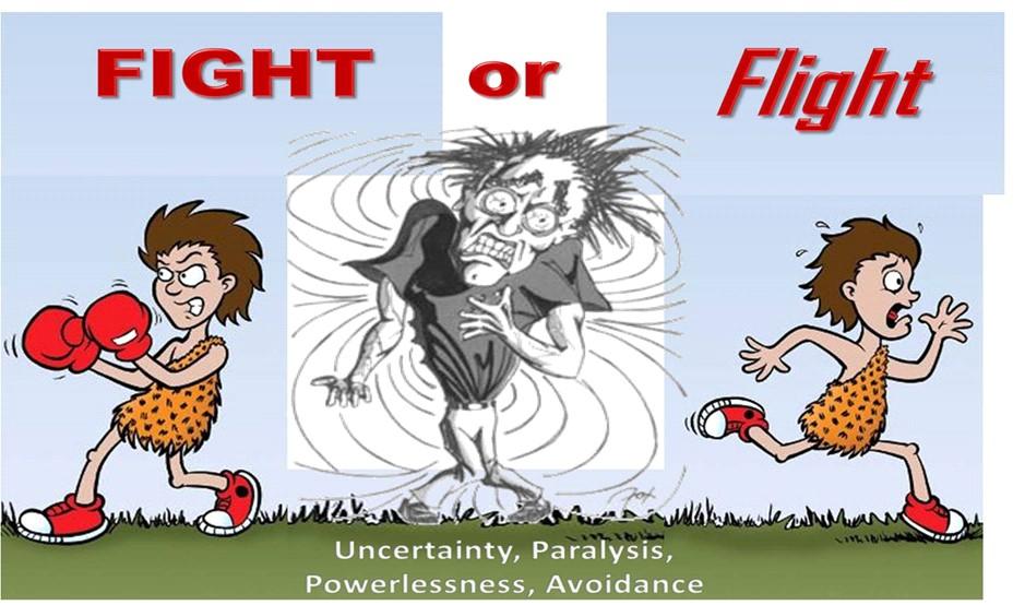 stress fight-or-flight