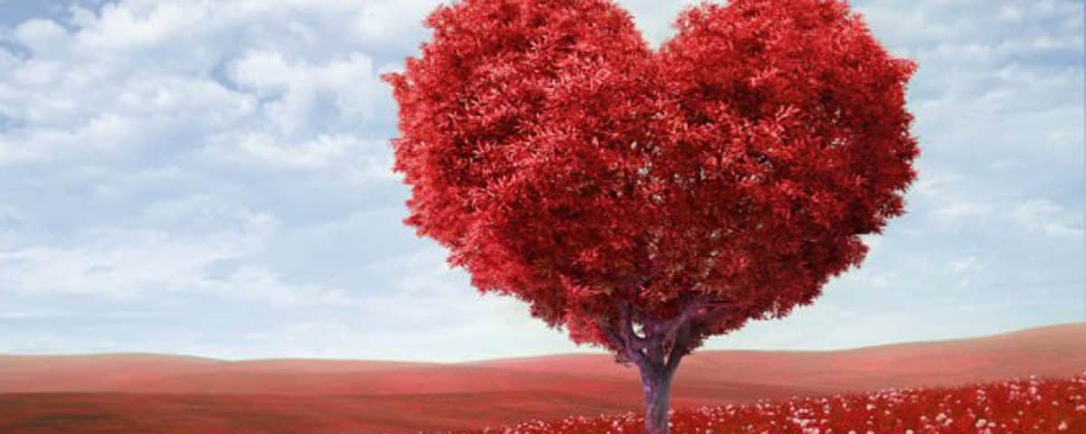 valentijnsboom
